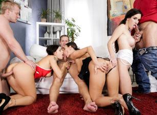 Orgy- sauvage amusant