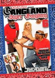 Gangland Super Gangbang #06 DVD Cover