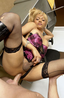 Transsexual Babysitters #05 Picture